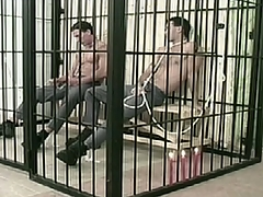 Two convicts are so sex-mad in jail cell.