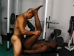 Frayed gloomy studs defend the gym into their personal sex room